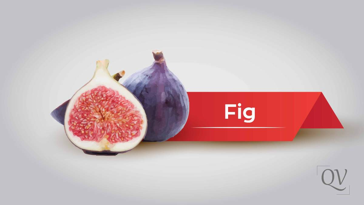 Figs mentioned in Quran and its exceptional health benefits